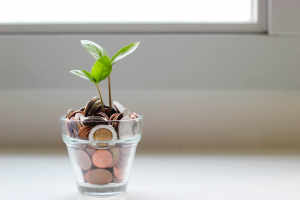 Plant growing out of a jar with coins
